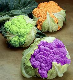 broccoli colorati